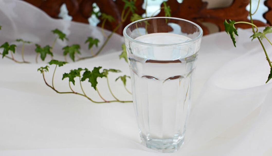 Ställ gärna ut ett vattenglas eller en skål över ett element under vintern. När vattnet dunstar höjs luftfuktigheten i rummet. Foto: Shutterstock